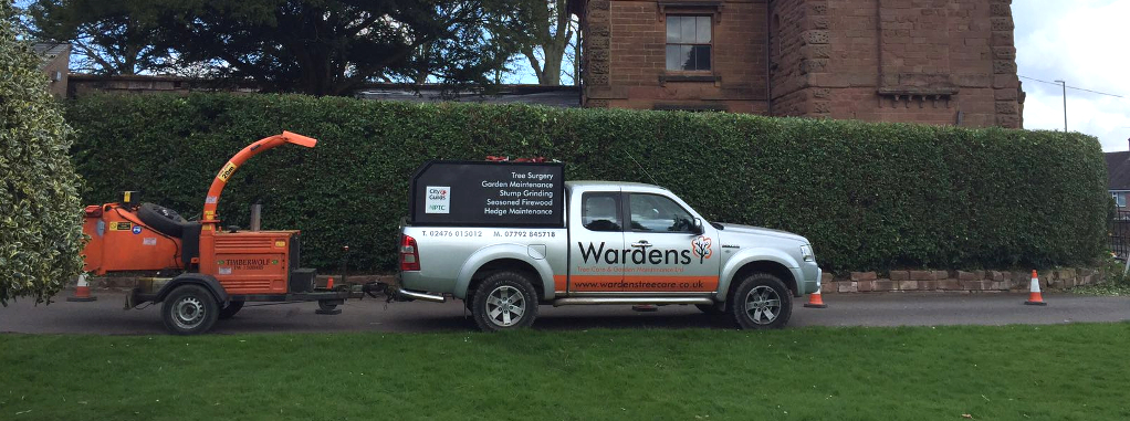 tree surgeons coventry